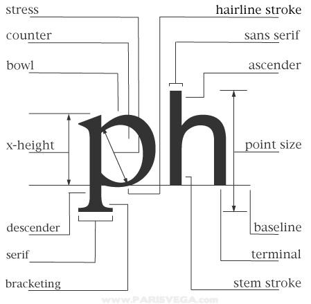 typography diagram   paris vegatypography diagram